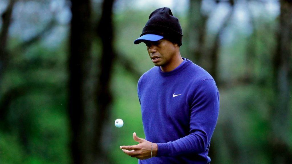 Masters champion Tiger Woods is among the favourites for the 101st US PGA Championship. (AP Photo/Julie Jacobson)