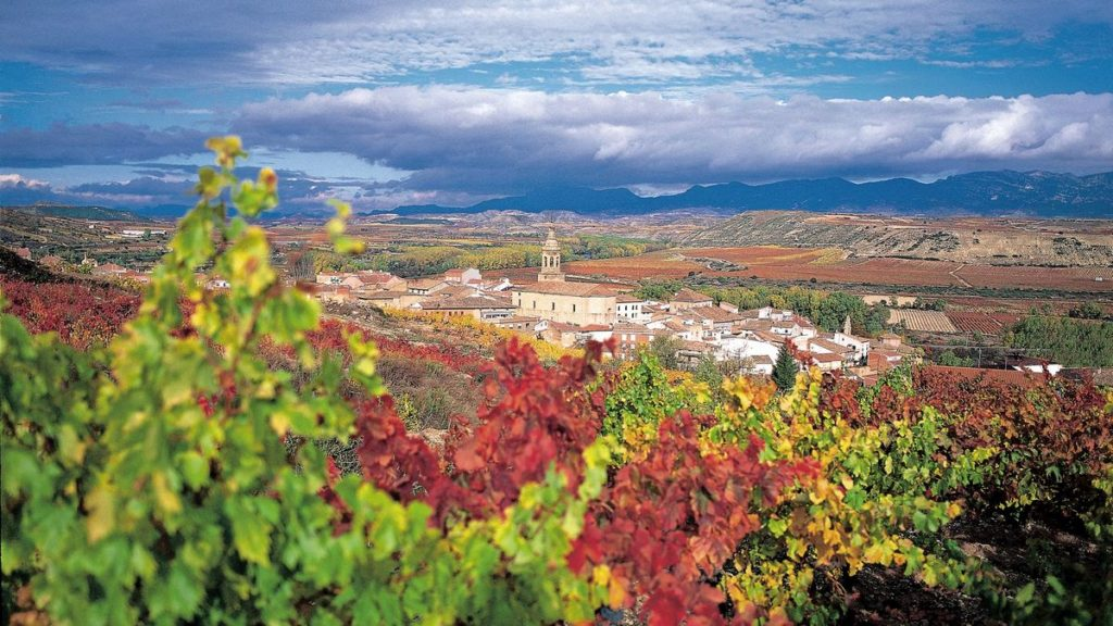 Entries set to pour in for Race to Rioja