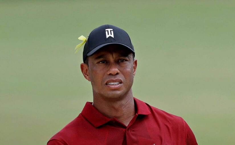 Tiger's Dozen - Major quest continues in two weeks